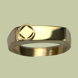 1561 Ladies Signet Ring w NA Service Symbol