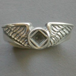 1641 Wing Ring w NA Service Symbol