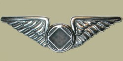2111L Lapel Pin Wings w/NA Service Symbol