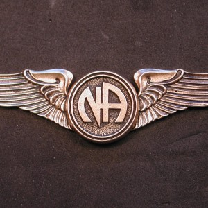 2132 Lapel Pin Large Wings w Narcotics Anonymous Logo NA recovery jewelry